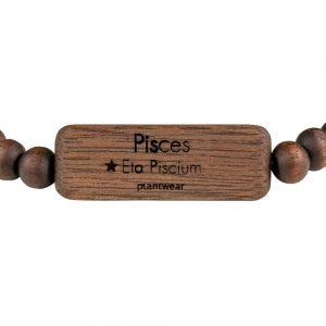 zodiac bracelet pisces